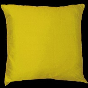Empire Silk Cushion Gold