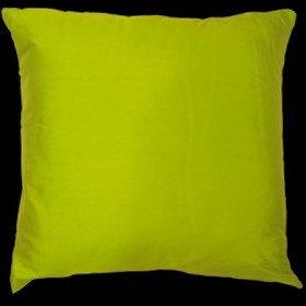 Empire Silk Cushion Lime